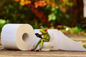 An image of a frog on the toilet figurine beside a pair of toilet paper rolls. Constipation can cause long and uncomfortable visits to the bathroom.